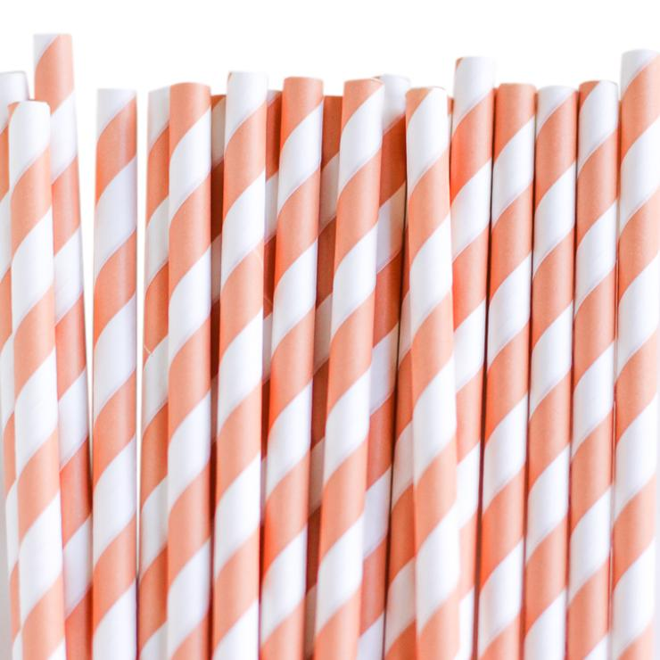 Eco Friendly Paper Straws: Peachy Stripes