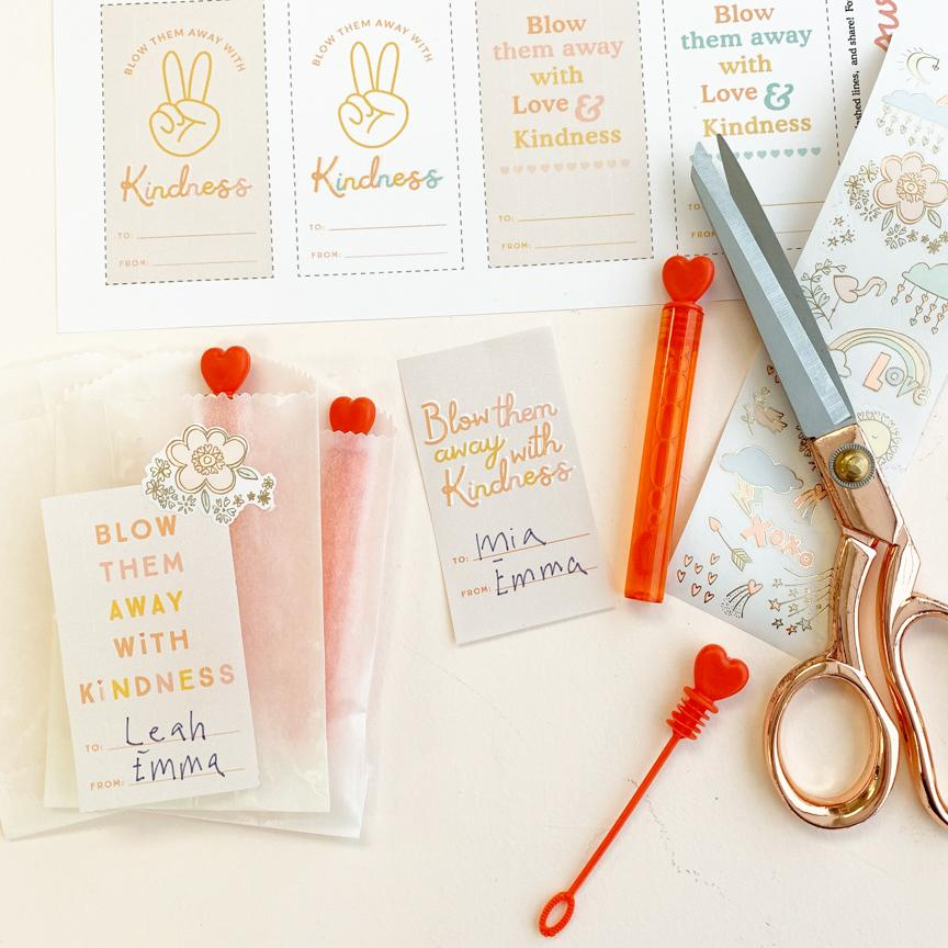 Set of 8 Mini Heart Bubble Wands with Free Printables!