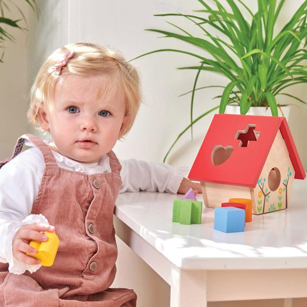 Wooden Little Bird House Shape Sorter