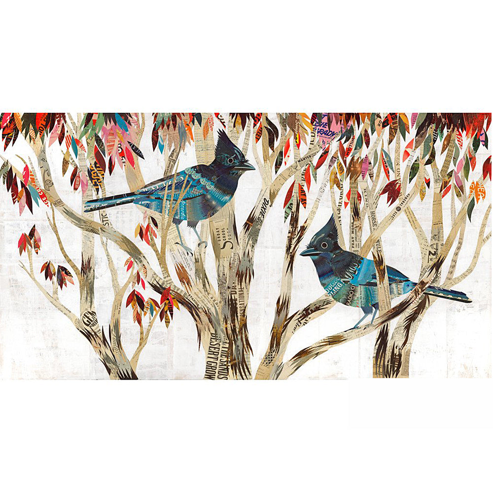 Multi Colored Print - Steller's Jay