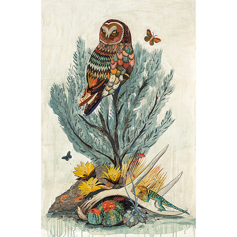 .Multi Colored Print - Owl