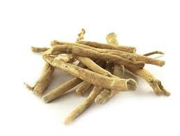 Ashwagandha (Withania somnifera) Fresh and Dried Root Tincture