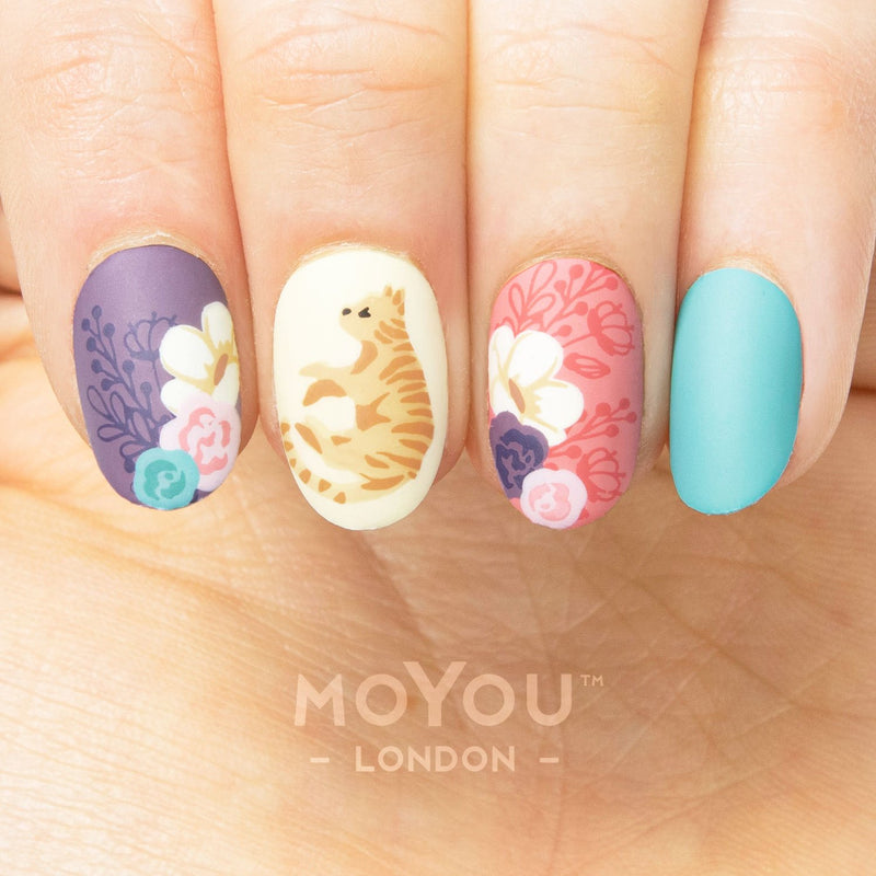 MoYou-London - Crazy Cat Lady 12 Stamping Plate