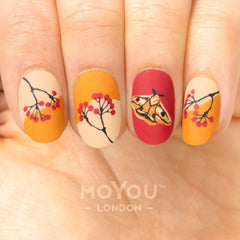 MoYou-London - Fall in Love 06