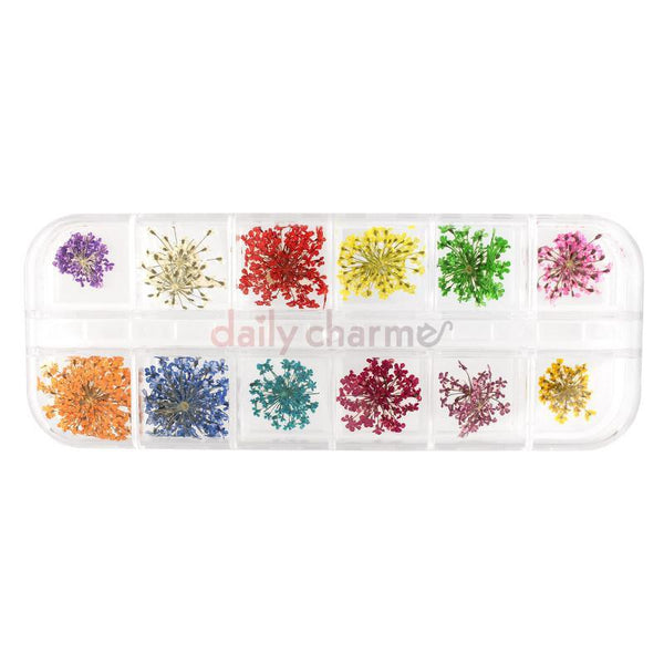 Daily Charme - Pressed Dry Natural Flower Set / 12 Colors
