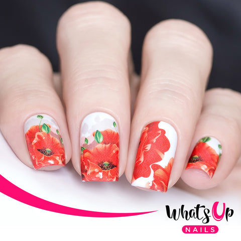 Whats Up Nails - P078 Sweet Poppy Water Decals