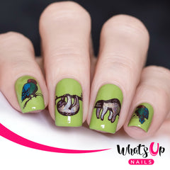 Whats Up Nails - A015 Amazonian Cuddlers