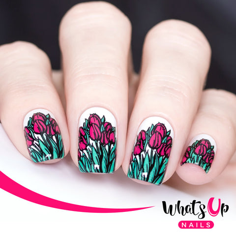 Whats Up Nails - B017 Spring Elation