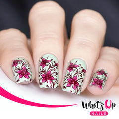 Whats Up Nails - B032 Floral Swirls