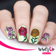 Whats Up Nails - B046 Petal to the Metal
