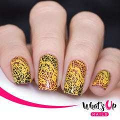 Whats Up Nails - B053 That's Pretty Autumn!
