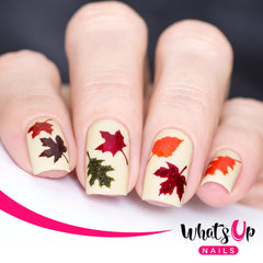 Whats Up Nails - Fall Stencils