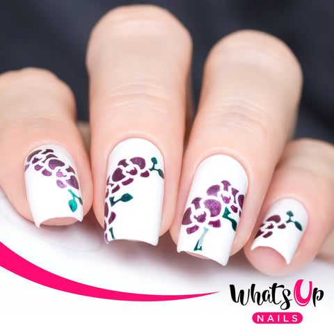 Whats Up Nails - Orchids Stencils by solo_nails