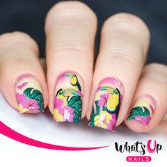 Whats Up Nails - P105 Tropicalota Water Decals