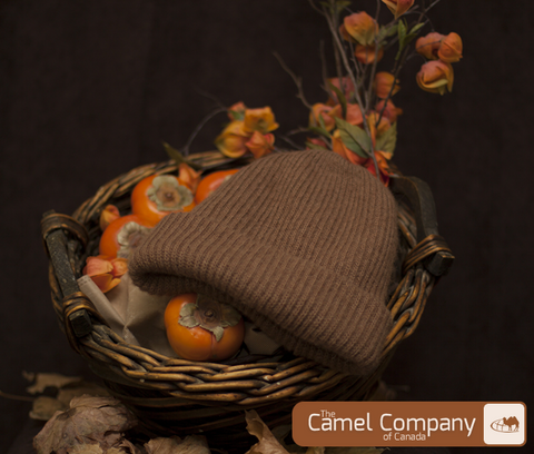 Camel Heal Double Layer Hat