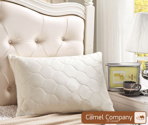 Camel Wool Pillows