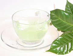 Green Tea Facial Cleanser