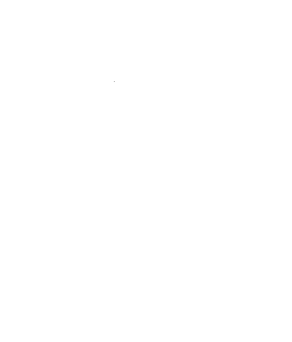 White MADISON ( LONGLINE ) Teeshirt with Black Charlie Logo