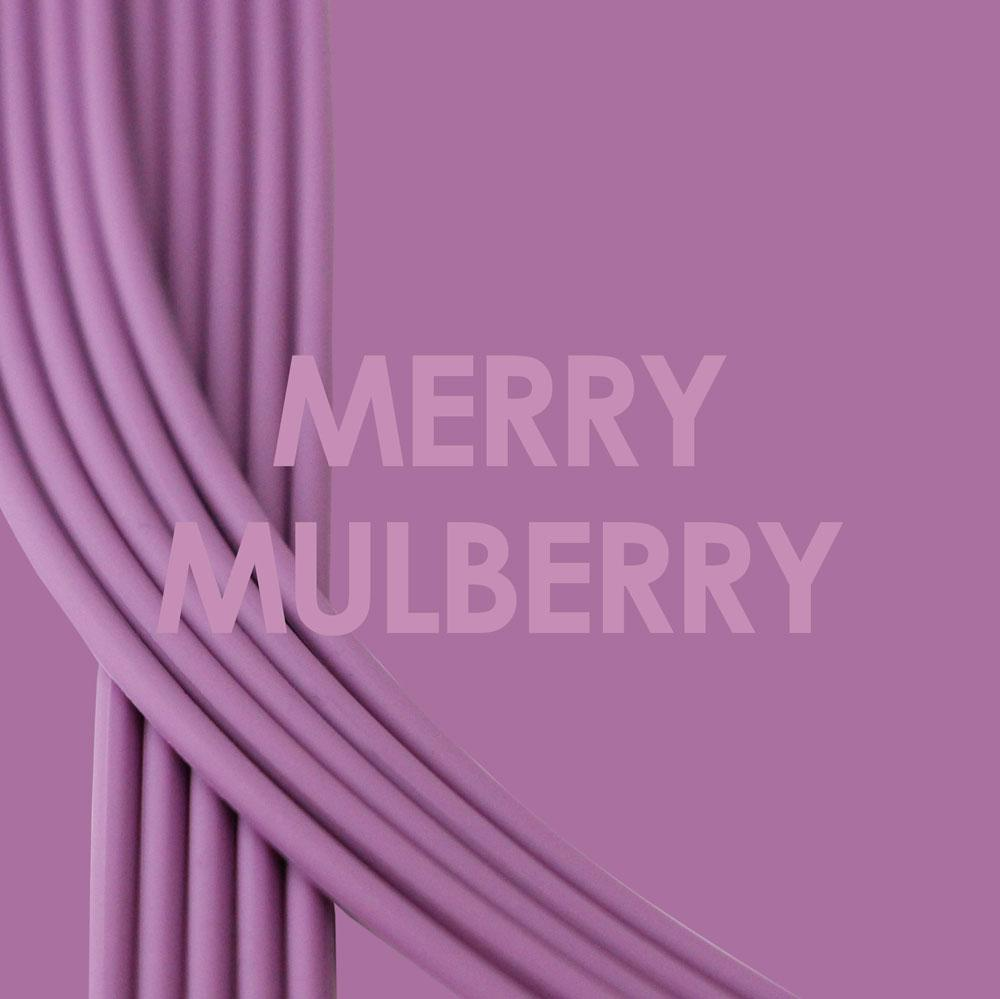 Merry Mulberry-Gold_Bra straps set 4 mulberry purple silicone adjustable straps & 4 gold hooks Brappz SKU# 7640174311545 brappz.com
