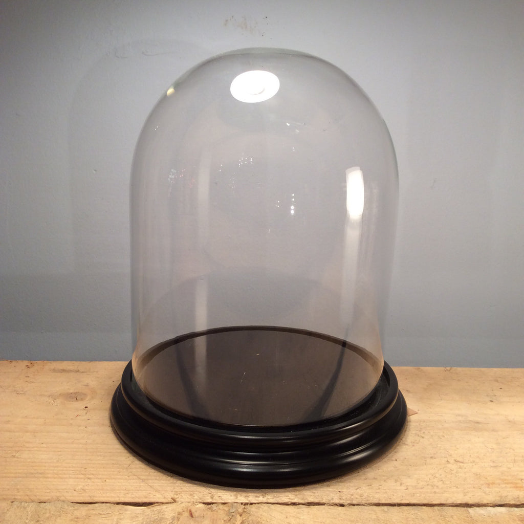 Glass Dome with Wooden Stand - Medium