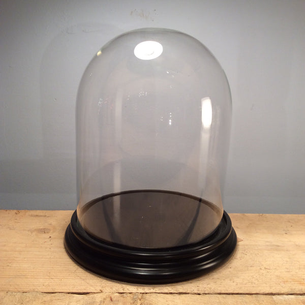 Glass Dome with Wooden Stand - Large H37xD35cm