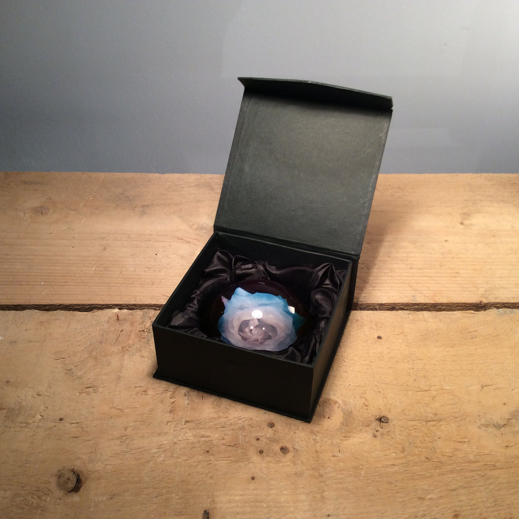 Alexander James Limited Edition Rose Paperweight