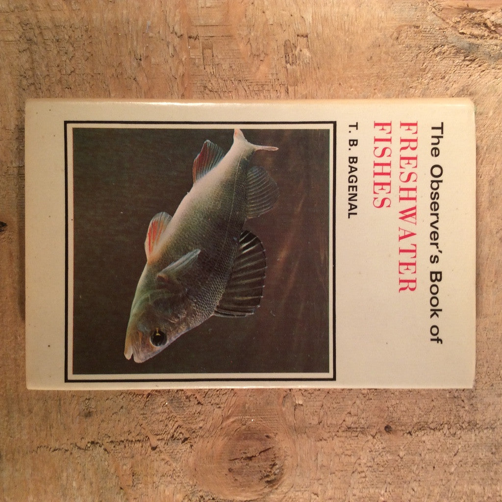 Vintage Book - The Observers Book of Freshwater Fishes