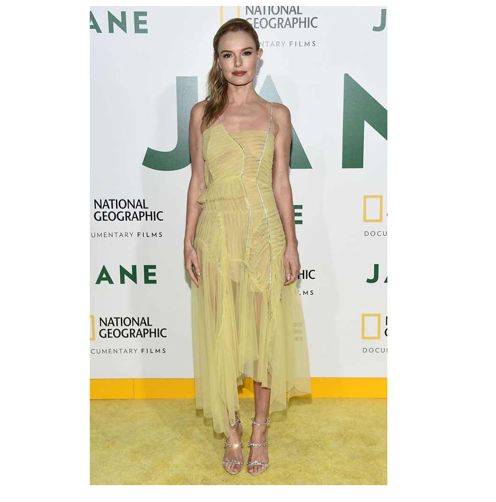 Kate Bosworth wearing exquisite luxury Preen By Thornton Bregazzi sheer yellow occasion dress