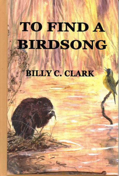 To Find A Birdsong
