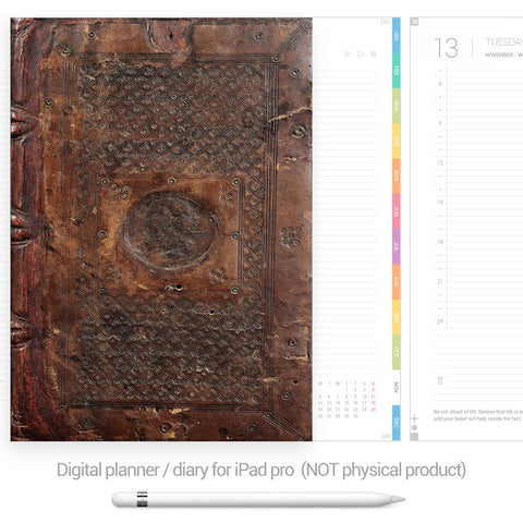 Digital Planner / Diary for GoodNotes - Colourful tabs - Antique - Decouart