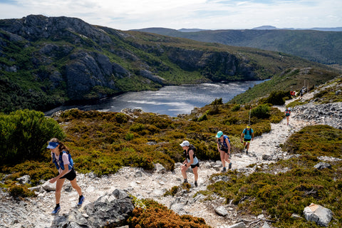Overland Track North find your feet experience, a group of trail runners can been seen running along a steep gravel trail, a lake and lush green mountains can been seen in the background