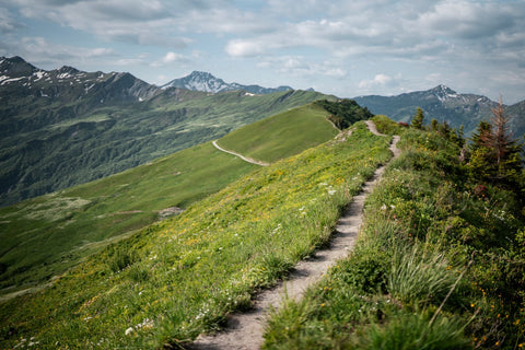 landscape image of running trail lush green grass and mountains in the background