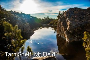 CPls04 Tarn Mt Field - Camhanaich Photography - Find Your Feet Australia Hobart Launceston Tasmania