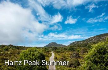 CPls13 Hartz Peak Landscape Summer - Camhanaich Photography - Find Your Feet Australia Hobart Launceston Tasmania