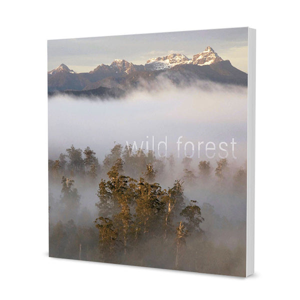 Rob Blakers Wild Forest - Find Your Feet