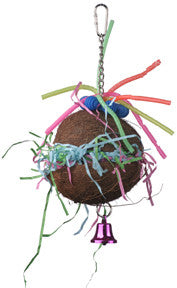 Coconut Craze Foraging Toy