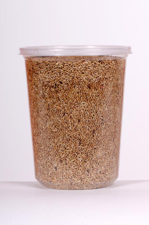 Plain Canary Seed (Alpiste)