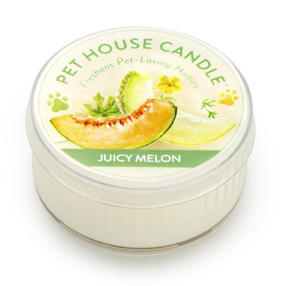 Juicy Melon Mini Pet House Candle