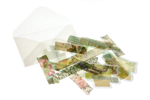 Translucent Stickers Set | Washi Tape B - Sticker - Backtozero