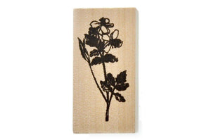 Botanical Rubber Stamp | N - Rubber Stamp - Backtozero
