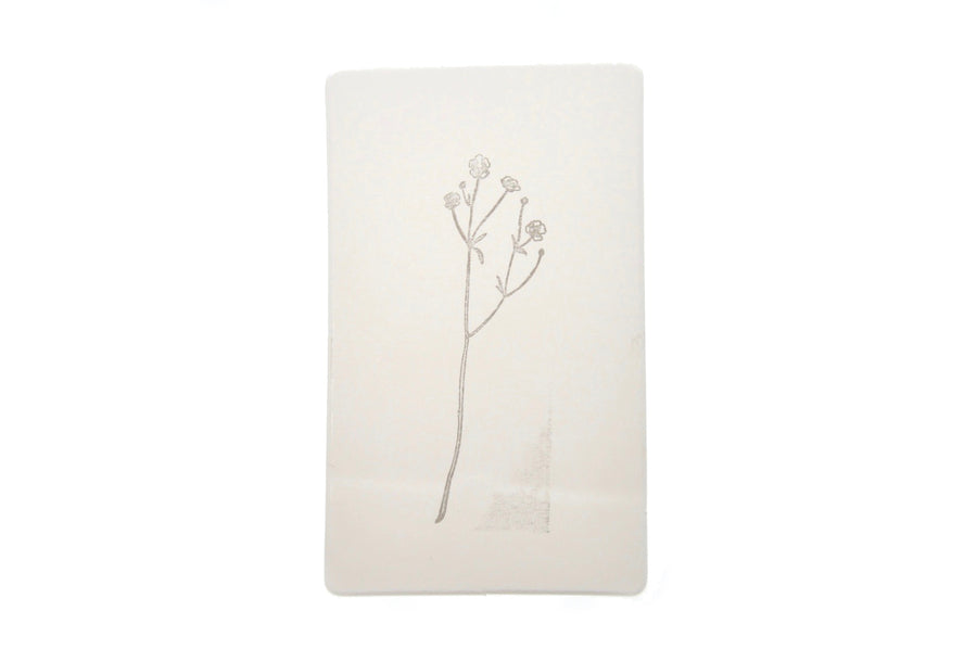 Botanical Rubber Stamp | A - Rubber Stamp - Backtozero