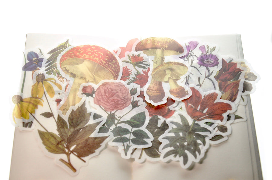 Translucent Stickers Set | Flower & Mushroom - Sticker - Backtozero