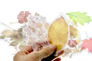 Translucent Stickers Set | Pressed Flowers & Leaf