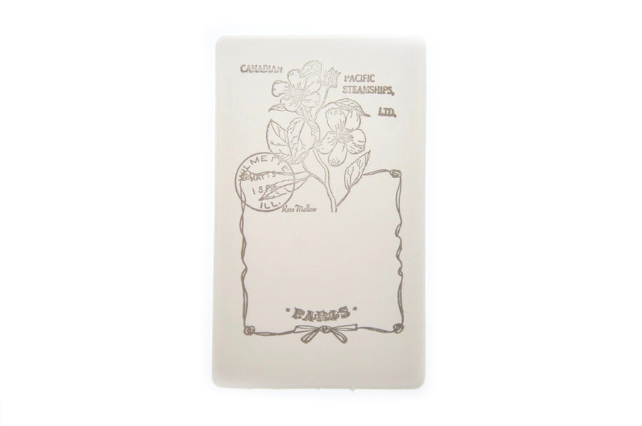 Nature Specimen Rubber Stamp | D - Rubber Stamp - Backtozero