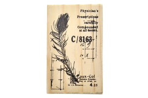 Nature Specimen Rubber Stamp | C - Rubber Stamp - Backtozero