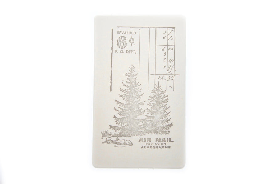 Nature Specimen Rubber Stamp | B - Rubber Stamp - Backtozero