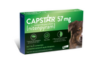 Capstar for Large Dogs
