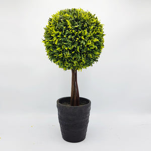Potted Desk Tree