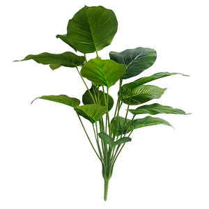 Tropical Plants - Greenery Plant - BIG