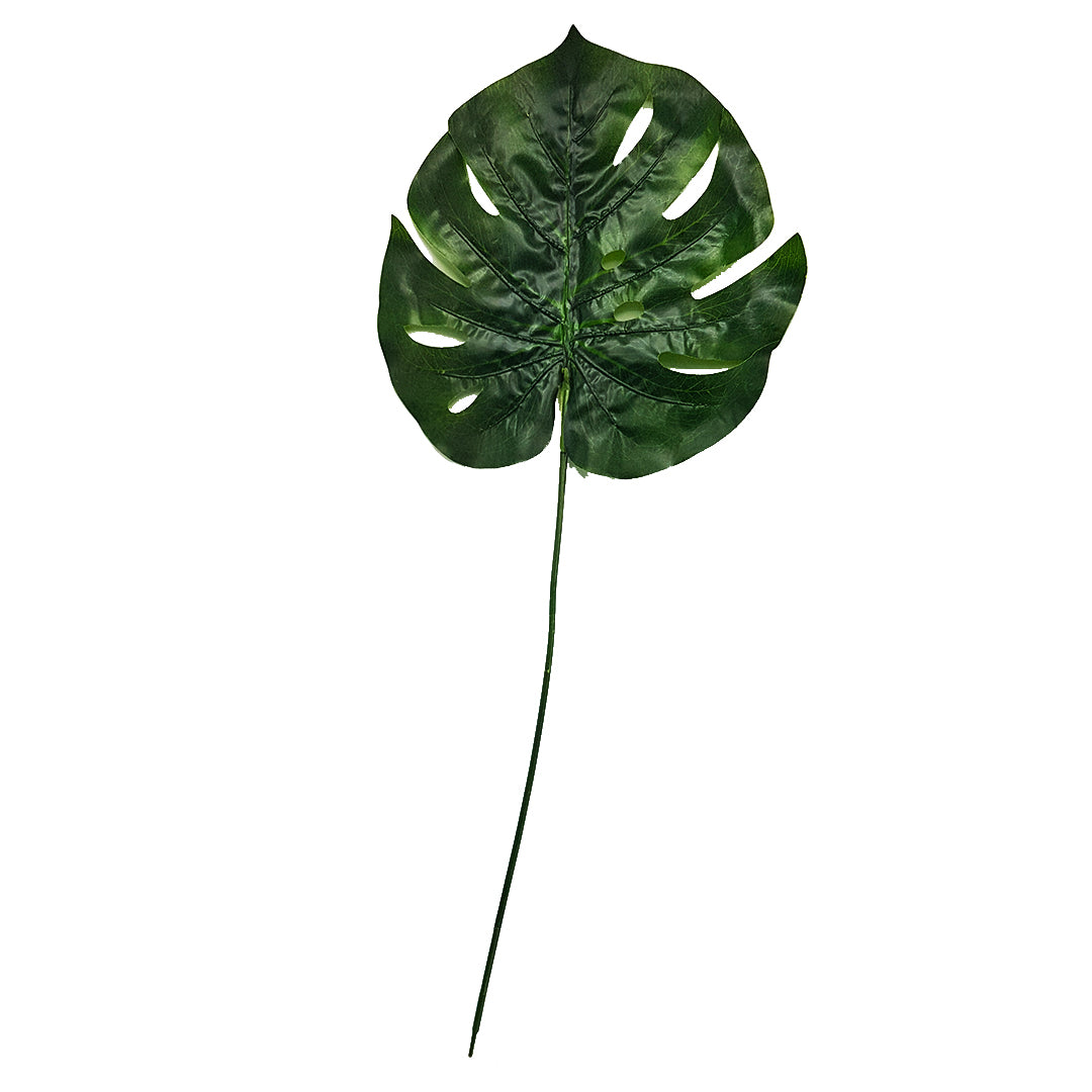 Tropical Plants -  Monstera Leaf Type 2